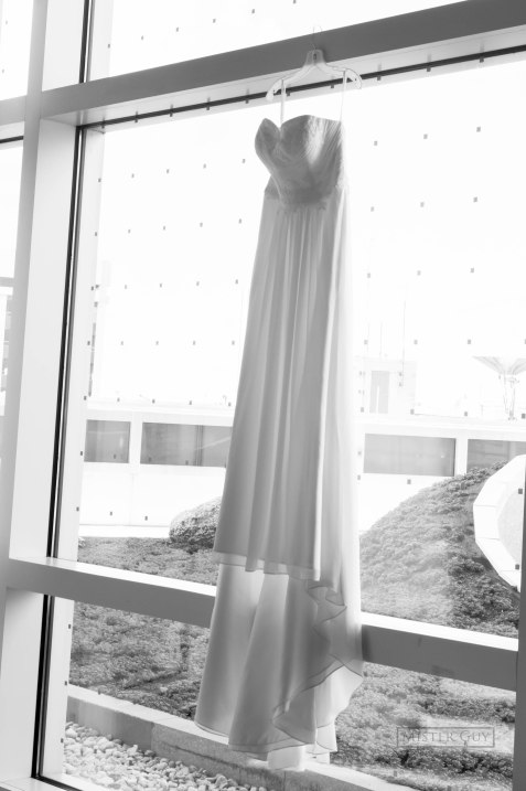 The Wedding Dress on Glass